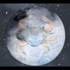 Venüs Yengeç Burcuna Geçiş Yapıyor