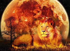 Aslan Burcunda Parçalı Güneş Tutulması