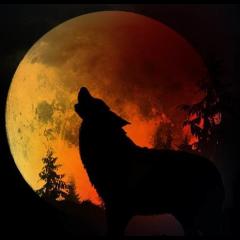 Süper Kanlı Kurt Ay Tutulması Nedir ve Neden Bu kadar Etkilidir?