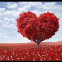 2019 Yılında Burçlar ve Aşk