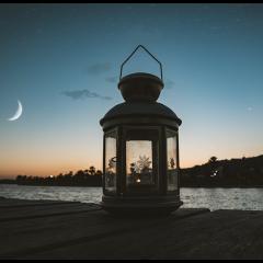 Ay ile Venüs Karesi